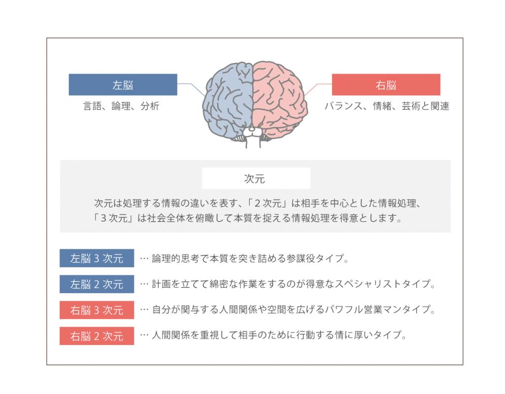 左脳・右脳